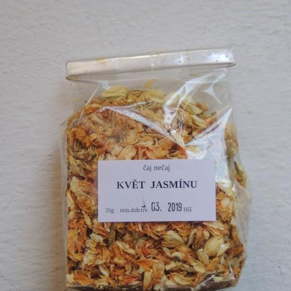 Jasmín - květ